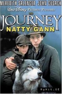 Путешествие Нэтти Ганн