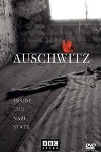 Аушвиц : взгляд на нацизм изнутри
